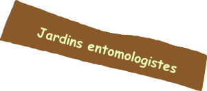 Jardins entomologistes